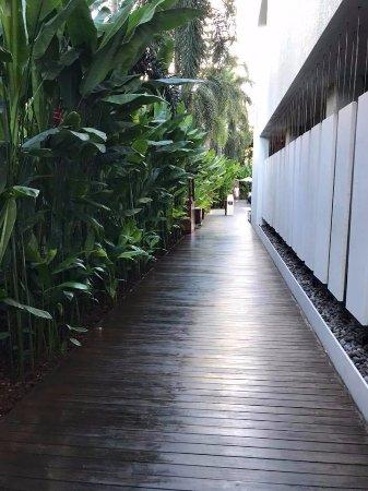 COMO Metropolitan Bangkok: Entrance way to Pool Area