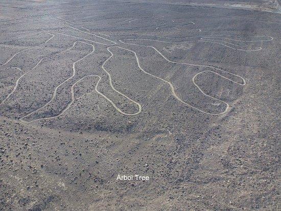 Lineas de Nazca: linies
