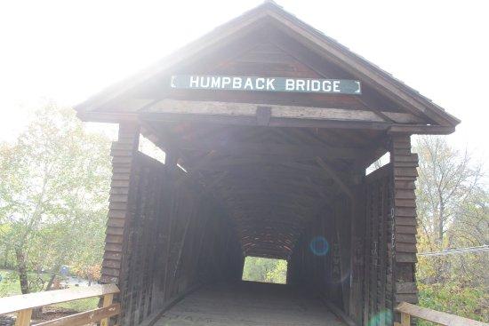Covington, VA: Humpback