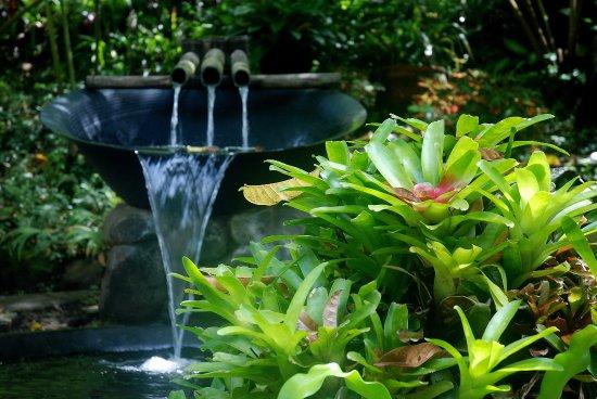 Насугбу, Филиппины: Japanese Garden, Caleruega Church