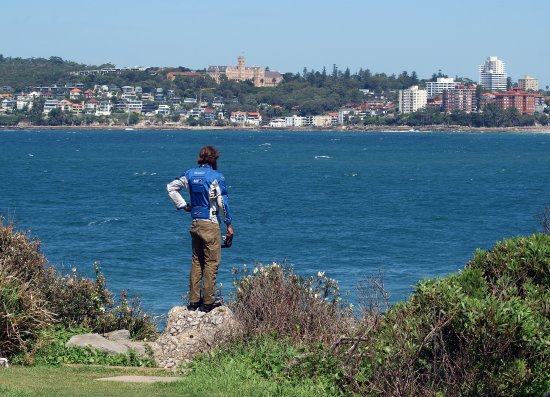 Freshwater Beach: Looking back at Manly Beach from McKillop Park, Freshwater Lookout