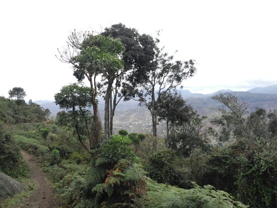 Região de Tanga, Tanzânia: IMG_20171026_103433_large.jpg