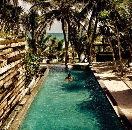 Be Tulum Hotel: photo1.jpg