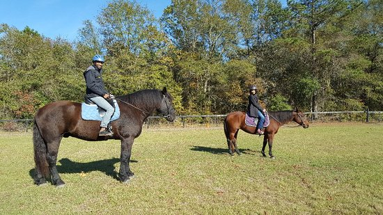 Hartsville, SC: Joyful Noise Riding Academy