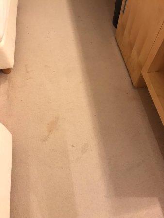 Sezana, Slovenia: Carpet stains
