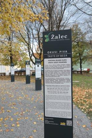 Zalec Hotels