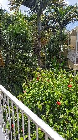 Negril Palms Hotel: 20160711_114635_large.jpg