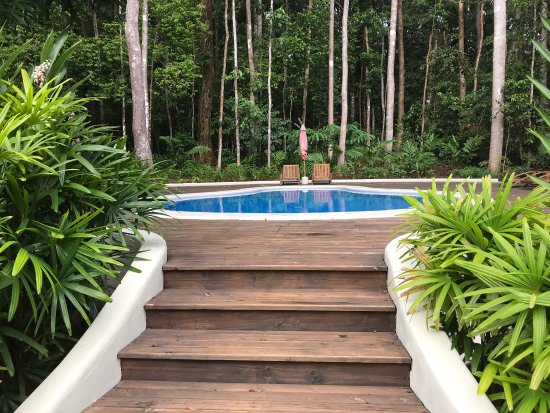 Bosque del Cabo Rainforest Lodge: Shares from our experiences at Bosque del Cabo