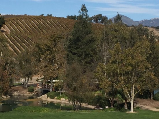 Santa Ynez, CA: Wow! What a view from Bridlewood