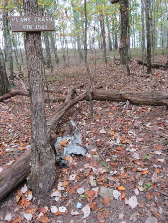 Oak Mountain State Park: Site of plane crash on the Blue Trail