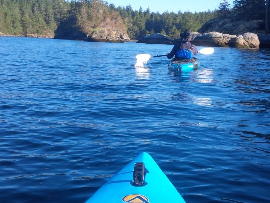 Setting out one morning up Sechelt Inlet - Great rocks and nature!