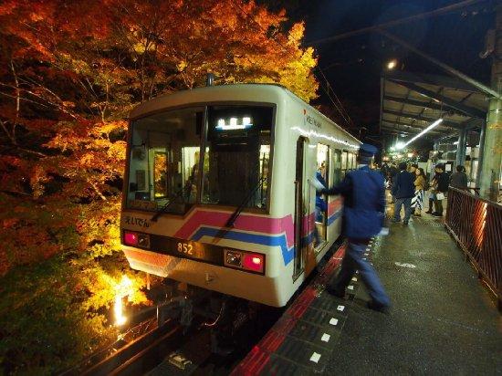Eizan Railway Momiji Tunnnel : photo3.jpg