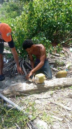 Gaspar Hernandez, República Dominicana: IMG-20170829-WA0009_large.jpg
