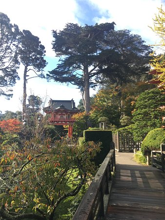 Japanese tea garden san francisco ca top tips before - Japanese tea garden san francisco ...