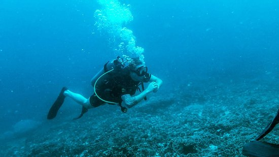Img 20171111 wa0015 picture of manta dive gili trawangan resort gili trawangan - Manta dive gili ...