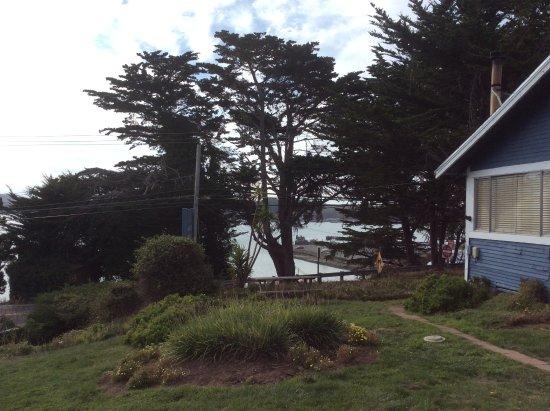 Bodega Harbor Inn: View of the harbor from the inn grounds