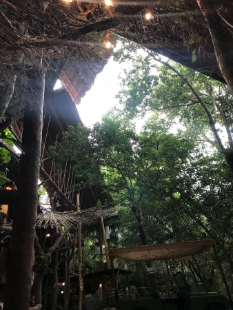Selvatica: Gorgeous park packed with adventures