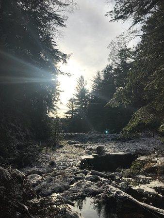 Beaver Pond Trail: photo2.jpg
