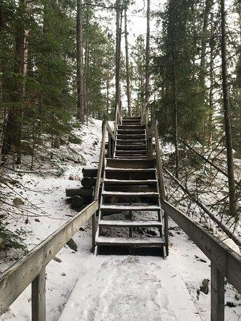 Beaver Pond Trail: photo4.jpg