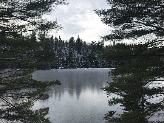 Algonquin Provincial Park, Kanada: photo5.jpg
