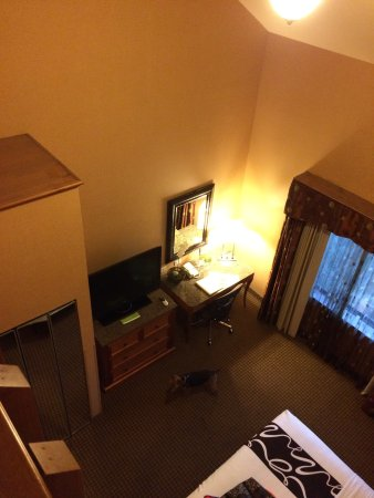 La Quinta Inn & Suites Twin Falls: King suite! Dog friendly!  October 2017