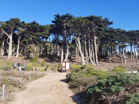 Start of the main Lands End Trail