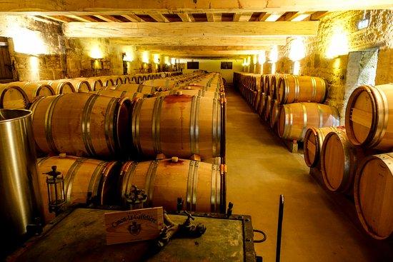Lafitte Wine Tours Bordeaux照片