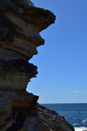 Coogee, ออสเตรเลีย: Landscape