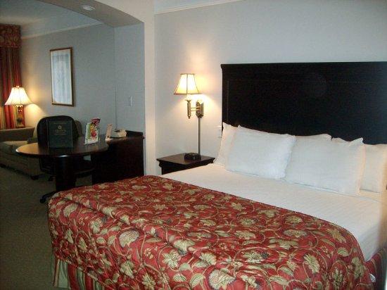 Latham, NY: Guest Room