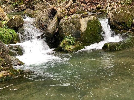 Hot Springs, VA: photo4.jpg