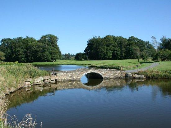 Waterford Castle Hotel & Golf Resort: Golf