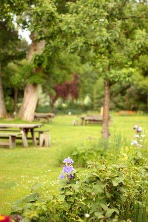 Hurley, UK: Garden