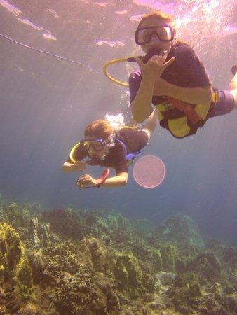 Pukalani, Hawái: SNUBA along the shores of Ka'anapali Beach