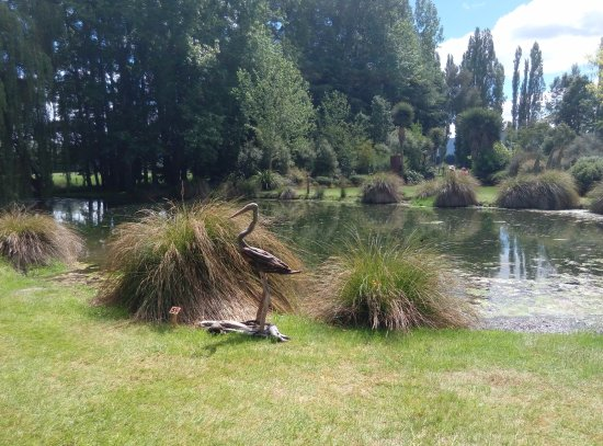 Hawarden, Selandia Baru: The pond at 'the bottom of the garden' - with a driftwood bird in temporary resident.