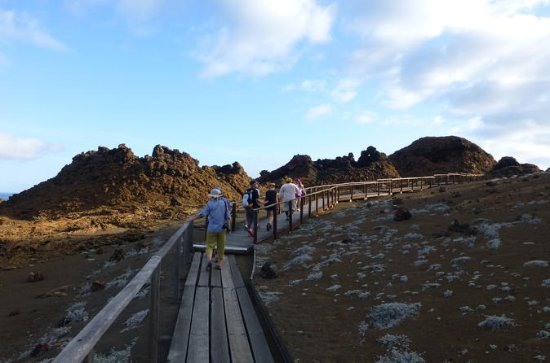 Small Group Bartolome Island Full-Day...