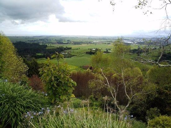 Panoramic view overlooking Te Puke and the Bay.