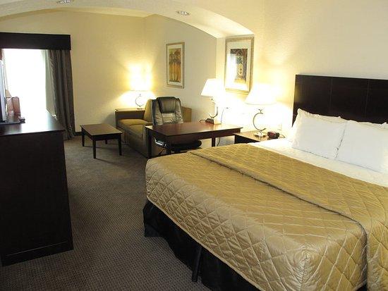 Port Orange, فلوريدا: Guest Room