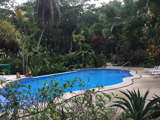 Hotel La Diosa: photo5.jpg