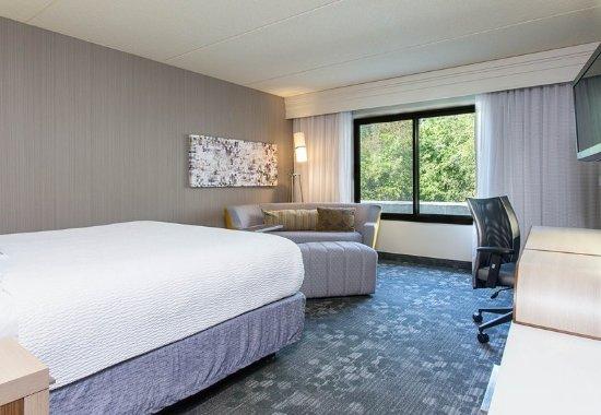 Vestal, نيويورك: King Guest Room
