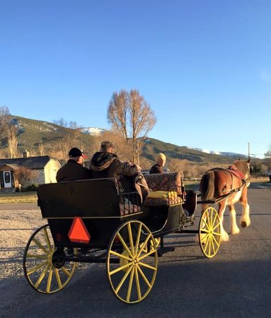 Let us book a tour of historic Manti for you in in a private vintage carriage.