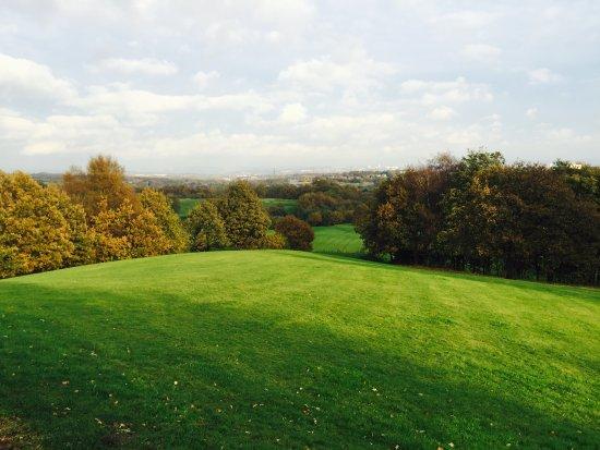 Bury, UK: Greenery