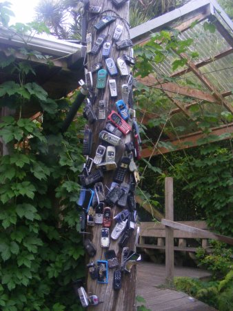 Onekaka, New Zealand: The pole outside, decorated with old mobile phones