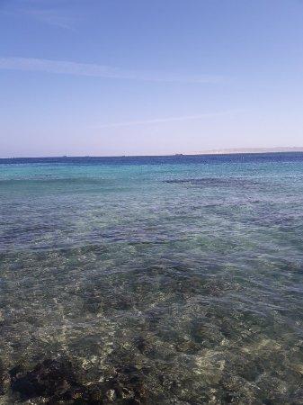 Seagull Beach Resort Hurghada Tripadvisor