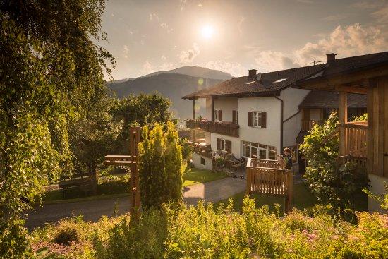 Anger, Avusturya: Rund um die Pension Kleinhofers Himbeernest ist alles grün