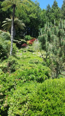New Plymouth, Nueva Zelanda: Greenery everywhere