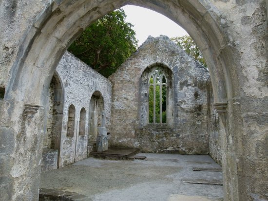 Muckross Abbey: photo1.jpg