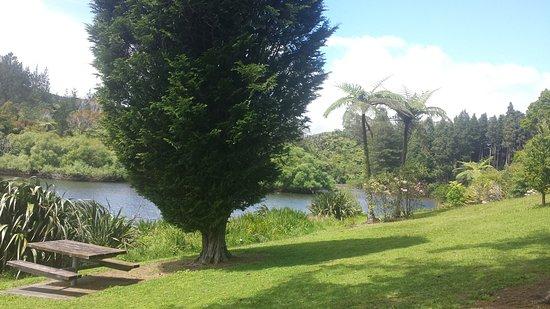 Stratford, นิวซีแลนด์: Greenery surrounding lake
