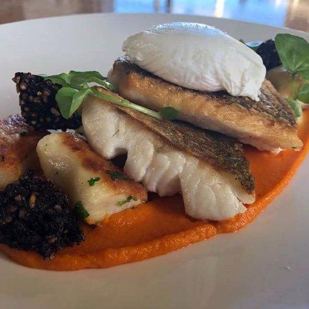 Drogheda, Ireland: Hake dish