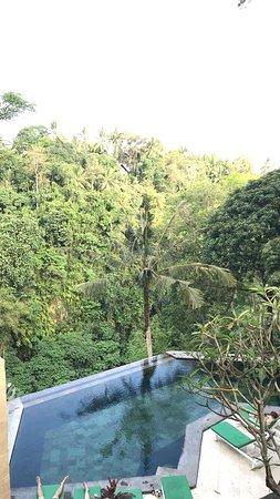 Beji Ubud Resort: photo3.jpg