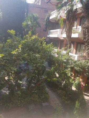 نيرفانا جاردن هوتل: Garden